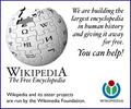 WikimediaOnion0805-oldfashioned.png