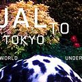 Underworld-jaltotokyosingle.jpg