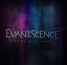 Evanescence What You Want single coverart.jpg