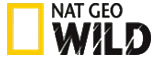 National Geographic Wild logo in the UK