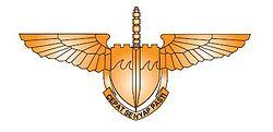 PASKAU Logo.JPG