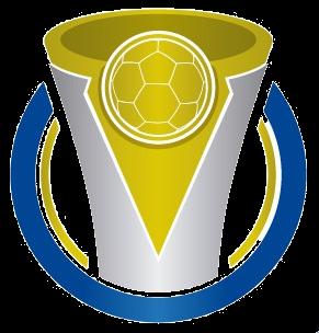 Campeonato Brasileiro De Futebol Serie D Wikipedia A Enciclopedia Livre
