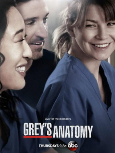 Grey S Anatomy 10 ª Temporada Wikipédia A Enciclopédia Livre