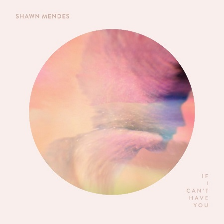 Shawn_Mendes_-_If_I_Can%27t_Have_You_-_Capa.jpeg
