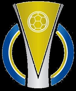 Campeonato Brasileiro De Futebol Serie C Wikipedia A Enciclopedia Livre