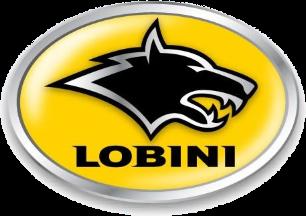 Lobini Wikip 233 Dia A Enciclop 233 Dia Livre