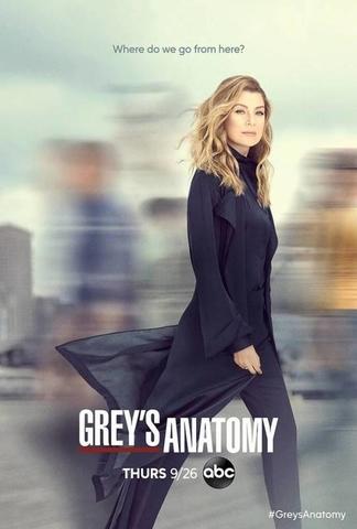 Grey S Anatomy 16 ª Temporada Wikipédia A Enciclopédia Livre