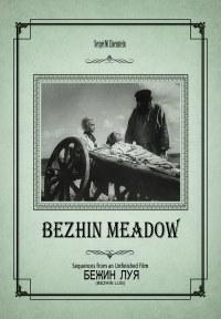 Turgenev s short story bezhin meadow