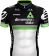 Camiseta Team Dimension Data