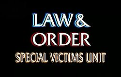 Essay on law and order svu