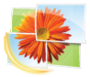 Logo Windows Live Photo Gallery-pt.PNG