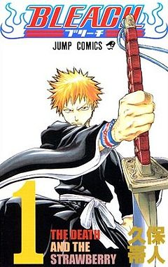 Bleach vol. 01.jpg
