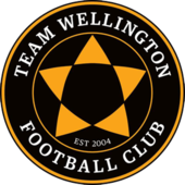 Team Wellington FC.png