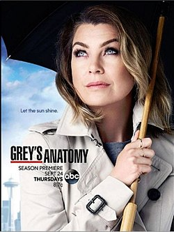 Grey S Anatomy 12 ª Temporada Wikipédia A Enciclopédia Livre