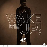 What Does The Song Wake Me Up By Avicii Mean