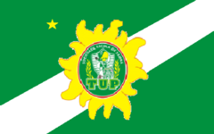 4a978a1958 Torcida Uniformizada do Palmeiras – Wikipédia