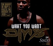 dmx and then there was x album download