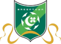 Hangzhou Greentown Football Club.png