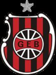 Assistir jogos do Grêmio Esportivo Brasil ao vivo