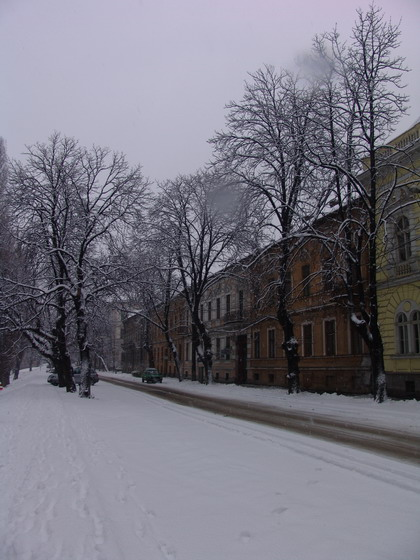 Fişier:Oradea parc.jpg