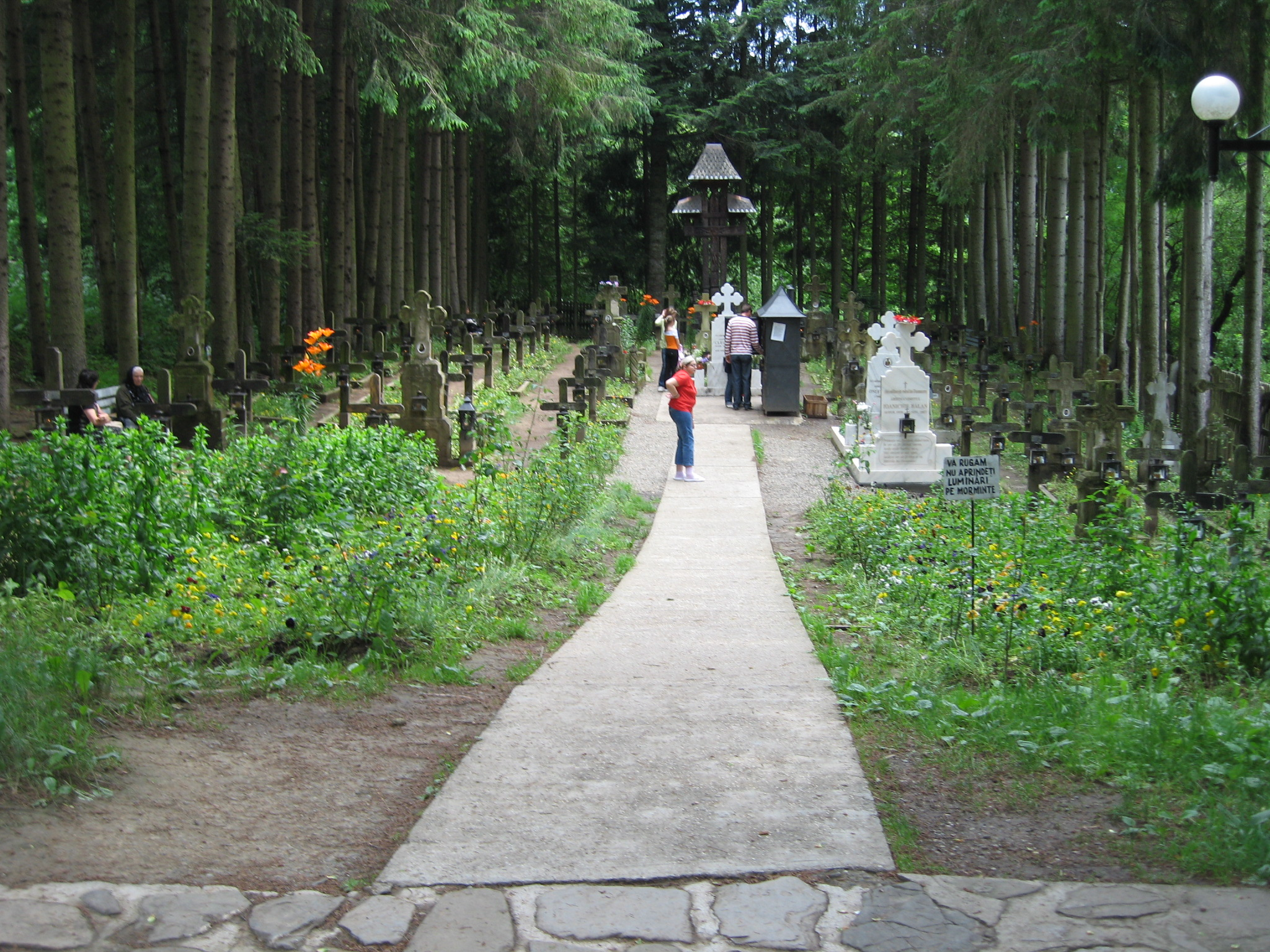 Fişier:Mănăstirea Sihăstria6.jpg