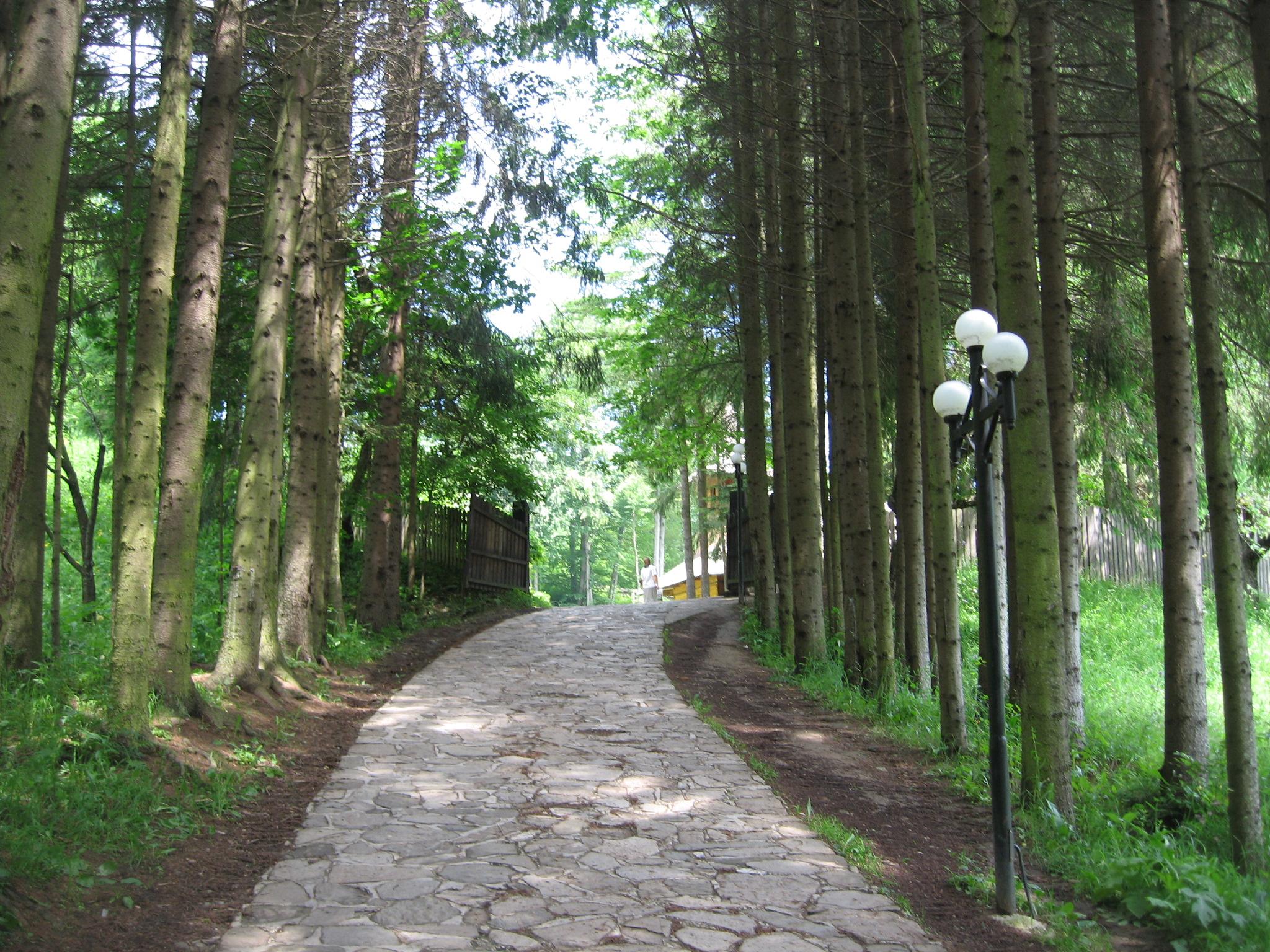 Fişier:Mănăstirea Sihăstria5.jpg