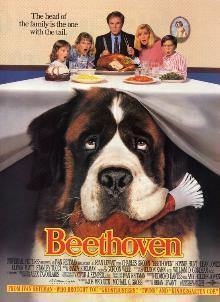 https://upload.wikimedia.org/wikipedia/ro/d/de/Beethoven%271992.jpg