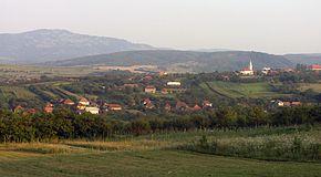 Cizer Sălaj Wikipedia