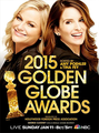 72nd Golden Globe Awards.png