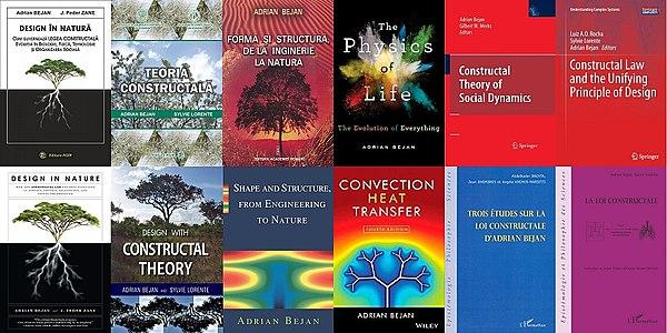 Teoria constructală - Wikipedia