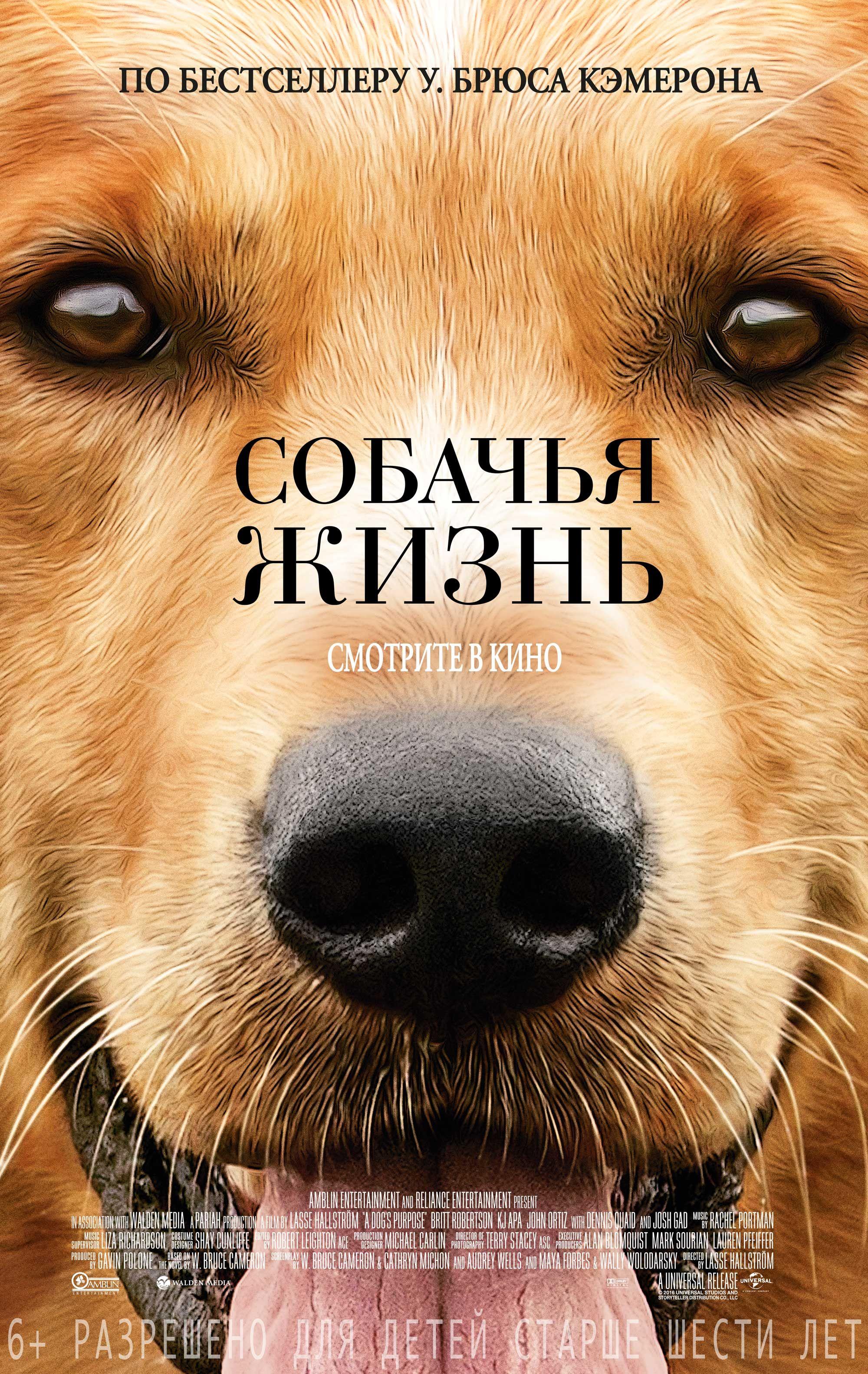 Хорошее кино для любителей собак и не только