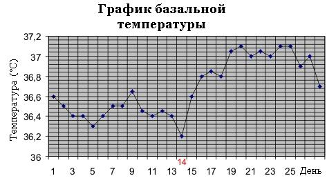температурный график:
