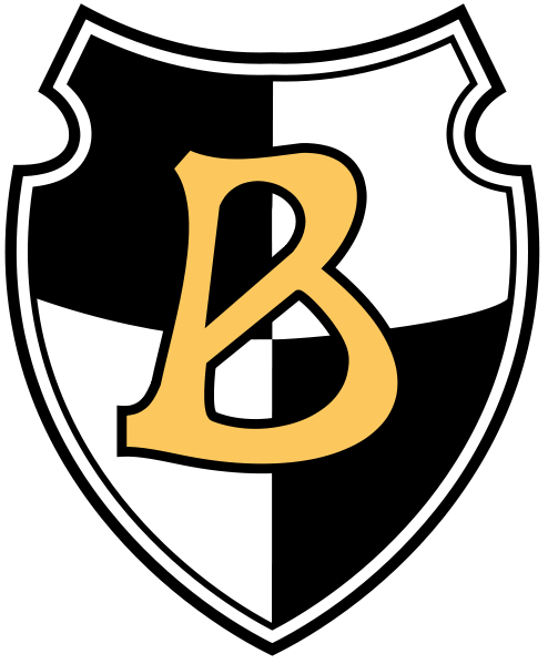 Википедия фк боруссия