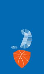 Баскетбольная клуб динамо москва воздух клуб в москве