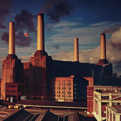 https://upload.wikimedia.org/wikipedia/ru/7/74/Pink_Floyd-Animals-Frontal.jpg