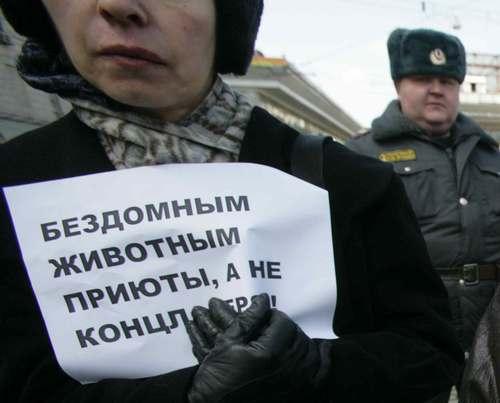 http://upload.wikimedia.org/wikipedia/ru/9/94/Kncla.JPG