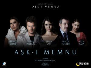 Запретная любовь (телесериал, Турция, 2008) — Википедия