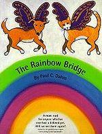 Все псы попадают за радугу