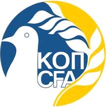 Україна - Кіпр 1:0. Вечір дебютів - изображение 2