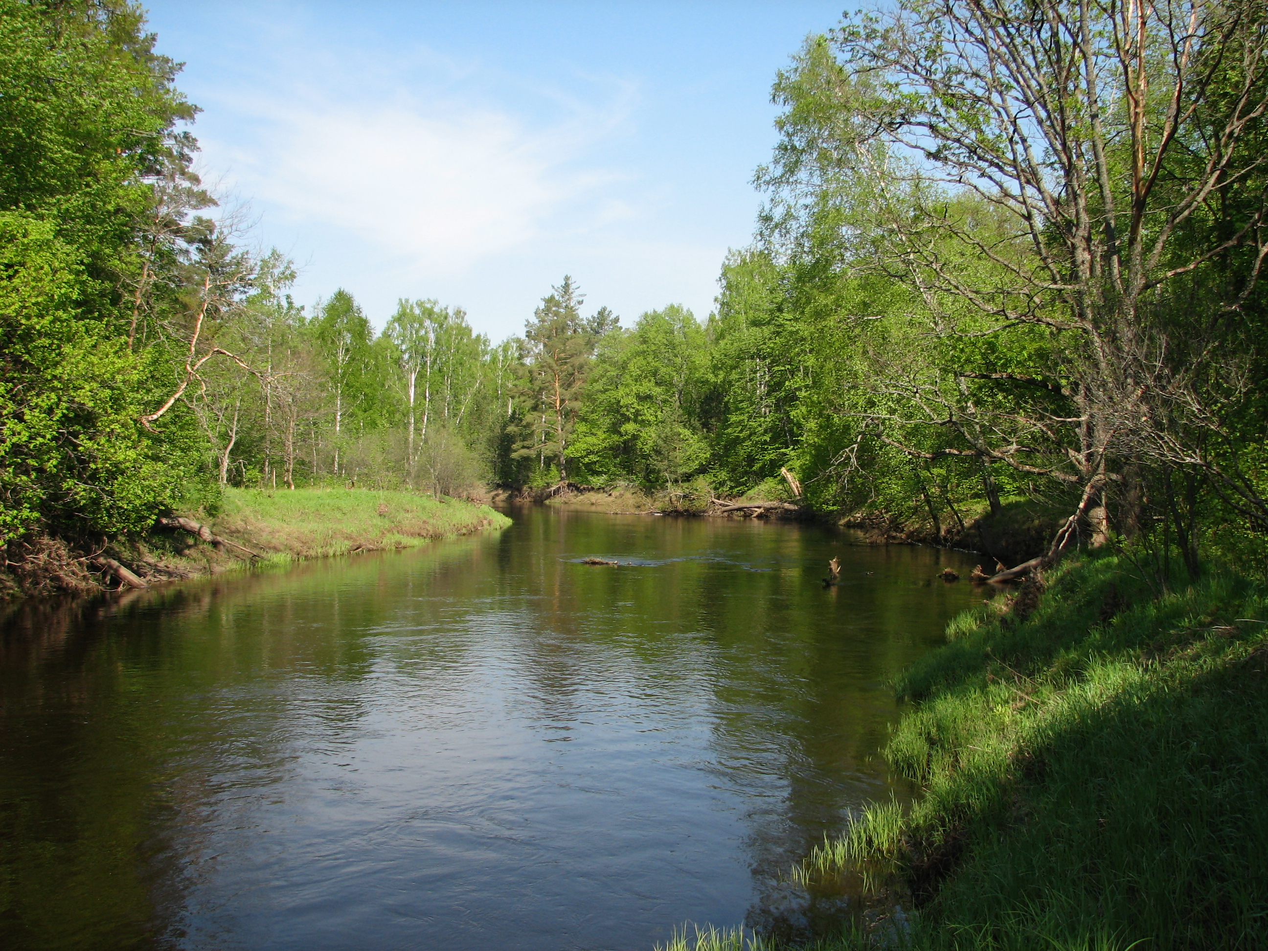 Куда течет река в брянске схема фото 199