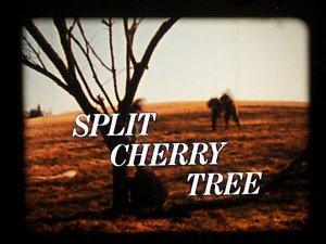 the split cherry tree 5 points answers сломанное вишнёвое деревце википедия
