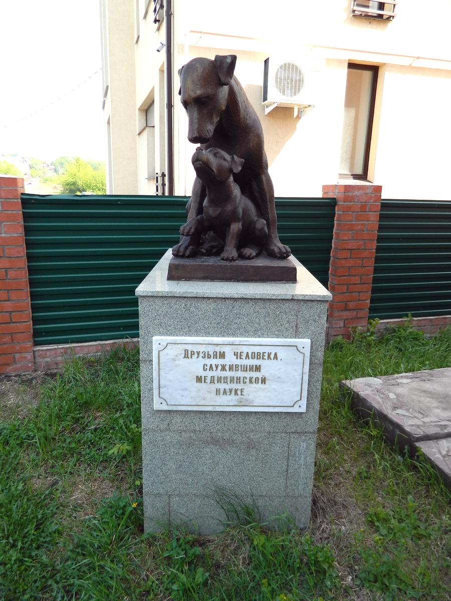 Файл Памятник подопытным животным Уфа jpg Википедия Файл Памятник подопытным животным Уфа jpg