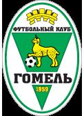 Шахтер Солигорск – Гомель. Прогноз на матч (27.05.2018)