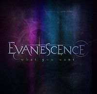 Обложка сингла «What You Want» (Evanescence, 2011)