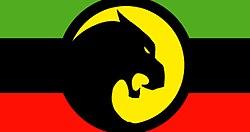 Flag of Wakanda.jpg