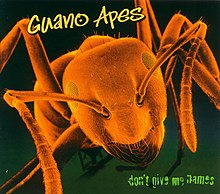 Обложка альбома Guano Apes «Don't Give Me Names» (2000)