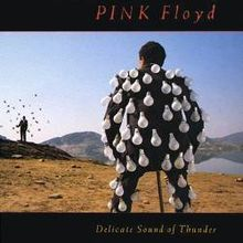 Обложка альбома Pink Floyd «Delicate Sound of Thunder» (1988)