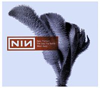 Обложка сингла «The Day the World Went Away» (Nine Inch Nails, 1999)