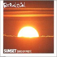 Обложка сингла «Sunset (Bird of Prey)» (Fatboy Slim, 2000)