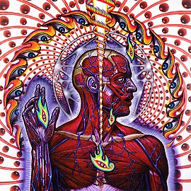 Обложка альбома Tool «Lateralus» (2001)
